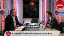 MUNICIPALES   « EN MARCHE PRATIQUE LA POLITIQUE DU COUCOU POUR MASQUER SON INCAPACITE A TROUVER DES CANDIDATS » - GUILLAUME PELTIER - L'INVITE DE GUILLAUME DURAND DU 05 02 2020