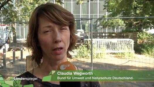 Hammer der Woche – Neues Bauhaus-Museum wird abgeklebt