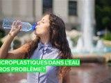 La consommation de microplastiques ne nuirait pas à votre corps