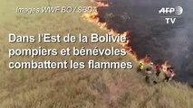 Bolivie: bénévoles et pompiers combattant les feux