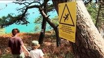 Bretagne : la crique de l'île Vierge toujours plus visitée