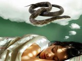 Snake Dreams | What Happens When You Get Snakes In Your Dream?