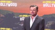 Leonardo DiCaprio's Environmental Fund donates $5 million to save the Amazon