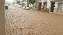Caen 50 litros por metro cuadrado en Pedrera (Sevilla)