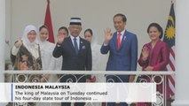Malaysian king meets Indonesian president in 1st state visit since coronation