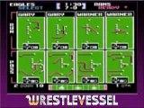 NES - Tecmo Super Bowl Review