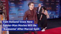 Tom Holland Speaks Up On His Spider-Man Fate