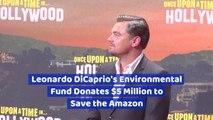 Leonardo DiCaprio Tries To Save The Amazon Rainforest