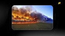 الاحتباس الحراري وحرائق الأمازون على طريقة #معك_خبر