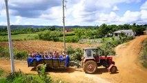 Le tracteur piscine de Cuba