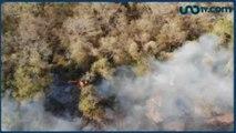 Javier Solórzano | El problema del incendio en la Amazonia es el calentamiento global