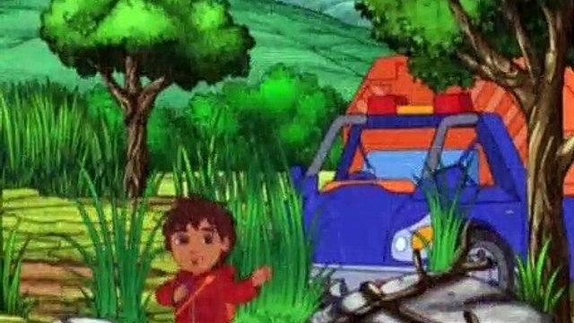 Go Diego Go Season 4 Episode 7 Bengal Tiger Makes a Wish