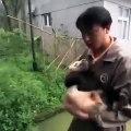 Le meilleur job du monde est de prendre soin des bébés pandas. Trop mimi !
