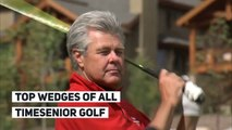 Top wedges of all timesenior golf