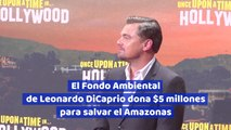 El Fondo Ambiental de Leonardo DiCaprio dona 5 millones para salvar el Amazonas