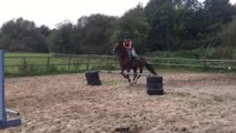 Girl Faceplants on Ground as Horse Refuses to Jump