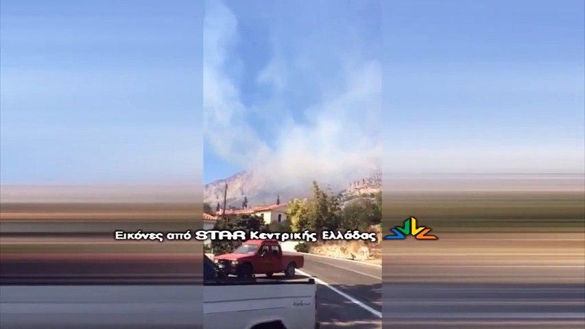 Μεγάλη πυρκαγιά σε εξέλιξη στους Δελφούς