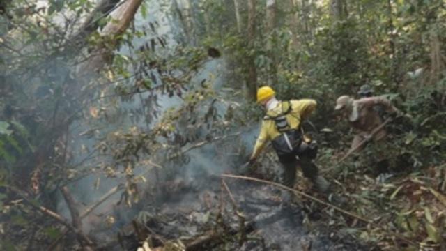Las llamas prosiguen sin tregua en la Amazonía brasileña