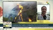 Brasil: fuerzas militares combaten incendios en el Amazonas