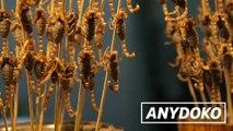 Fried Scorpions In Beijing: The Best Snack Food In Beijing