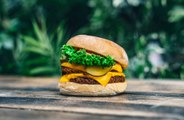 Lewis Hamilton launching plant-based burger chain