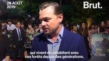 """Amazonie : """"Nous avons le devoir de protéger cet environnement vital"""", a déclaré Leonardo DiCaprio"""