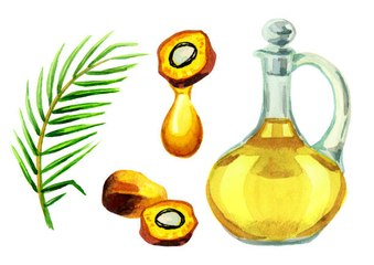 Alles über Palmöl