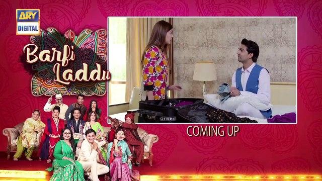 Barfi Laddu Epi 14 - 29th August 2019 - ARY Digital Drama