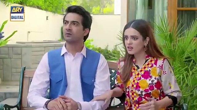 Barfi Laddu Ep 14 - 29th August 2019 - ARY Digital Drama