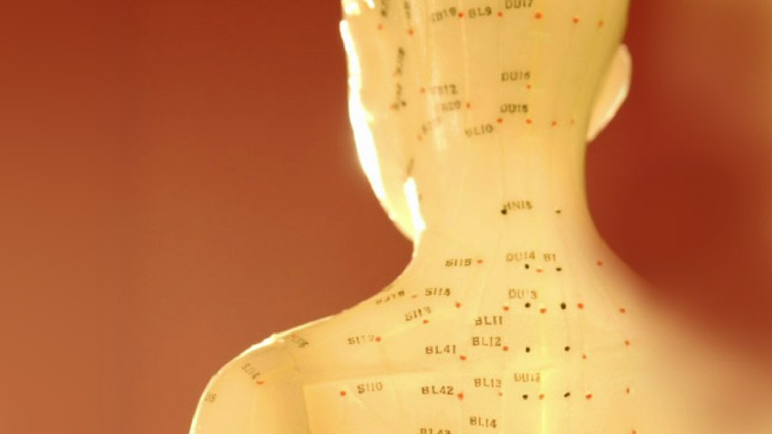 Chinese Acupuncture for Mid Back Pain
