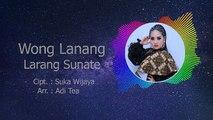 Susy Arzetty - Wong Lanang Sunate Larang Lirik