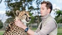 The Cheetah Man Raising Big Cats