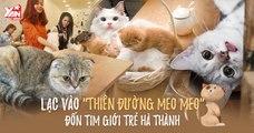 """Quán cà phê """"BOSS"""" nổi tiếng ở Hà Thành - Các SEN đâu hết rồi?!!!"""