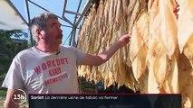 Dordogne : la dernière usine française de tabac va fermer