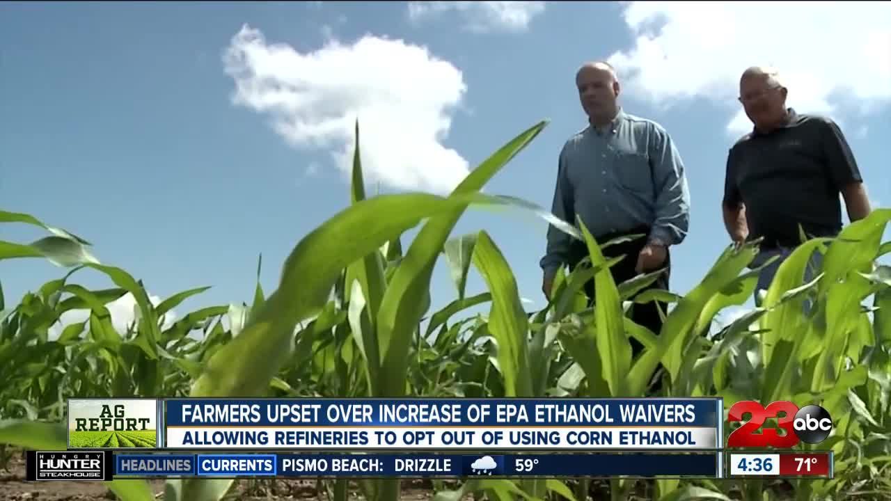 Ag Report: EPA ruling angers corn farmers, USDA looking to re-hire, and Murray Family Farms hiring