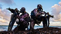What Navy SEALs Do