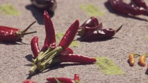 """A """"scorching"""" celebration that praises the chile pepper in New York City"""