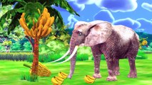 Ten Head Elephant Stories For Kids - Cartoon For Children