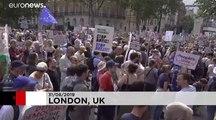 "Proteste in London: ""Gegen den Tod der Demokratie"""