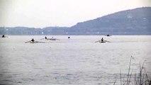 Deniz Küreği Türkiye Şampiyonası