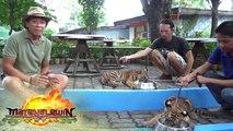 Kim Atienza visits two three-month old tiger cubs at the Manila Zoo | Matanglawin