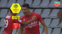 But Zinedine FERHAT (2ème) / Nîmes Olympique - Stade Brestois 29 - (3-0) - (NIMES-BREST) / 2019-20