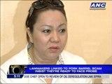 Senators ready to face pork barrel scam probe