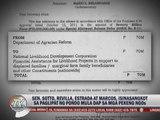 4 senators tagged in alleged DAP misuse