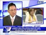Arroyo has never met Napoles- lawyer