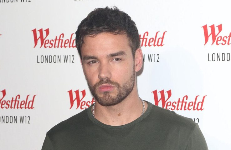 Liam Payne 'besotted' with Maya Henry