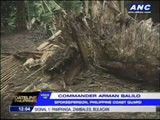 'Yolanda' damages houses, topples trees, power lines