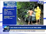 Heavy rains, strong winds batter Cebu