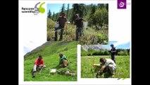 Rencontres scientifiques 2016 : Alpages sentinelles : la science en herbe et en partage - Cédric Dentant