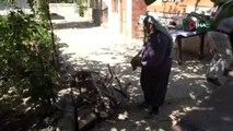 Kadın hızarcı, ekmeğini odundan çıkartıyor